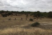 Kruger & Panorama Escape Cycle Tours